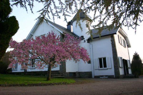 Kasteel Grande villa de Cockaifagne - België - Ardennen - 20 personen - huis